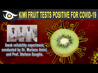 🥝 KIWI FRUIT TESTS POSITIVE FOR COVID19 - Swab reliability experiment conducted by Dr Mariano Amici & Prof Stefano Scoglio