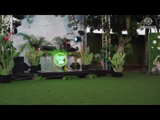 Sacha Robotti - Day Trip Livestream