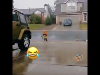 все любят дождик!