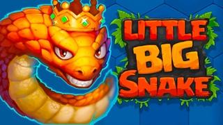 Little Big Snake.Очень классная игра на android IOS змейка Победа! Взяли ПЕРВОЕ место.Литл Биг Снек