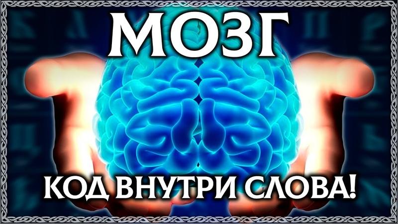 ЧТО ТАКОЕ МОЗГ Буквица открывает тайну слова мозг ОСОЗНАНКА