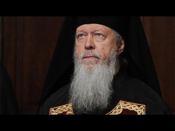 Какая наша самая большая беда Епископ Августин Анисимов