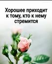 Объявление от Irina - фото №1