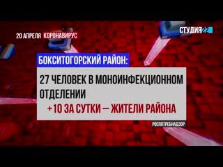 Коронавирус: информация по Бокситогорскому району на 20 апреля