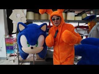 Mascot costumes – sonic the hedgehog