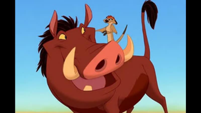 тимон и пумба мультфильм