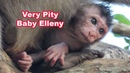 Very Pity Baby Elleny When Kidnapper Catch Him For Long Time - Adorable Wildlife 2020