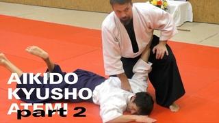 HANDABWEHR und -KONTROLLE  - Aikido, Atemi, Kyusho (Dimmak) Elemente Teil 2 mit Konstantin Rekk