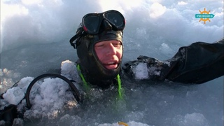 Анонс . Арктическая экспедиция.