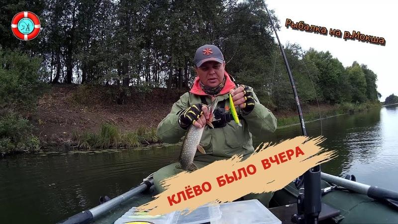 КЛЁВО БЫЛО ВЧЕРА (р. Мокша Мордовия)