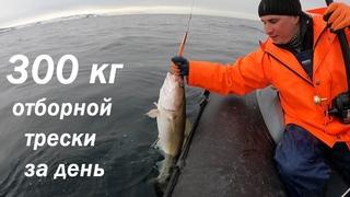 ОЧЕНЬ УДАЧНАЯ АПРЕЛЬСКАЯ РЫБАЛКА НА ВОСТОКЕ О. КИЛЬДИН В БАРЕНЦЕВОМ МОРЕ  / VERY SUCCESSFUL FISHING