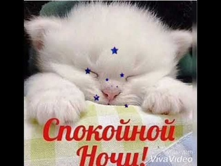 Доброй ночи и сладких снов.
