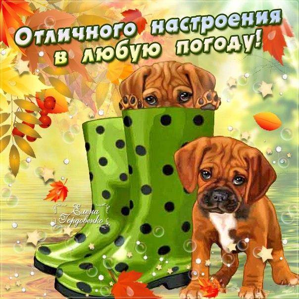 Открытки с днем российского таможенника