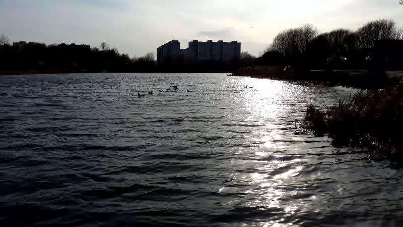 Жизнь как река течет плавно своим чередом неторопливо всегда Сотворяя всё что должно произойти💛