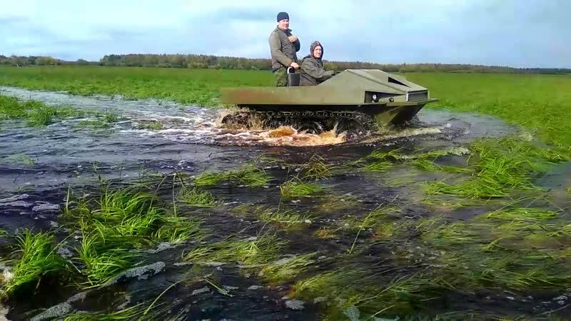 Черепаха и Кракен на болоте Полное видео путешествия