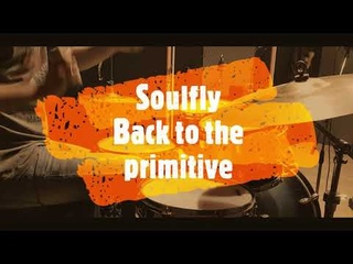 Soulfly - Back to the primitive - drumcover by Evgeniy sifr Loboda