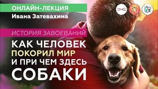Как человек покорил мир и при чём здесь собаки? Иван Затевахин. #Научная_Станция_Онлайн