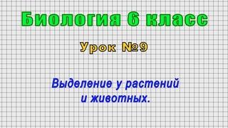 Биология 6 класс (Урок№9 - Выделение у растений и животных.)
