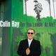 Colin Hay - I Wish I Was Still Drinking