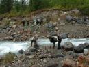 Переправа коней через бурный поток (речка Камрю?)