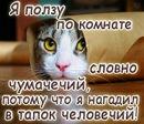 Личный фотоальбом Владимира Яценко