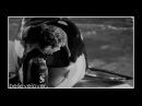 Valentin (orcinus-
