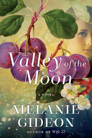Melanie Gideon - Valley of the Moon (retail) (epub)