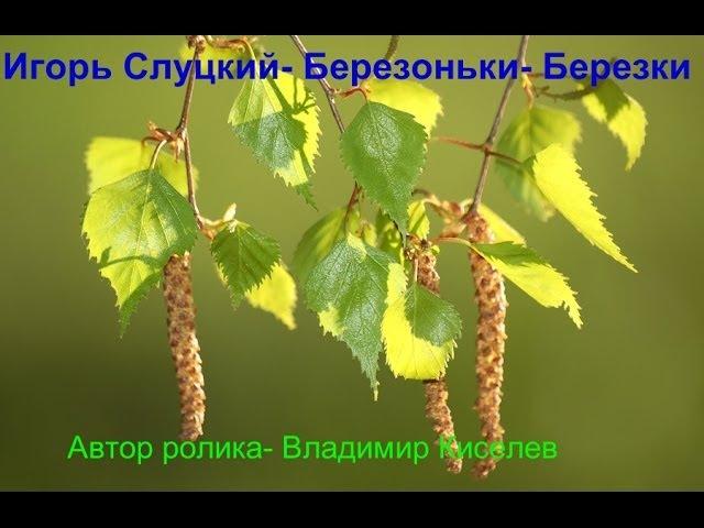 Игорь Слуцкий Берёзоньки Берёзки