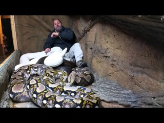 Crazy Jay Brewer #LivingTheDreamattacked by one of his largest snakes