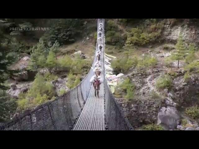 Пешком по Непалу Trekking in Nepal