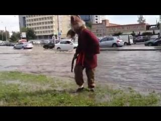 Сплинтер из Черепашек ниндзя оказался на улице в Минске из-за подтоплений подвалов.