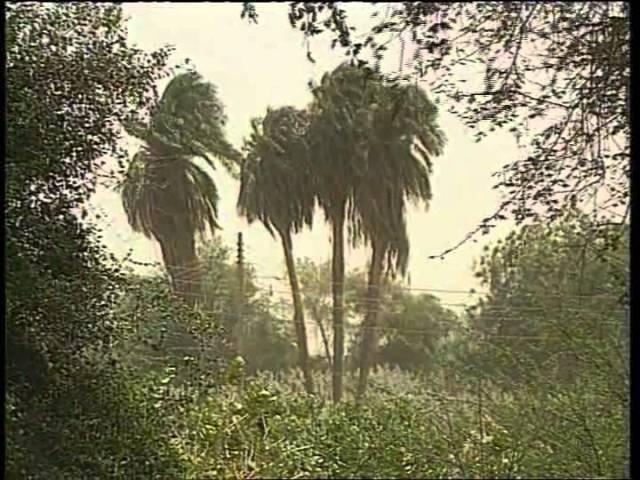 Сакральные цивилизации: Судан - Республика Махди Г.Джемаль