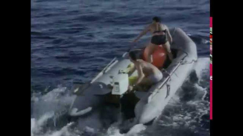 Жак Ив Кусто Киты и кашалоты 1968 Подводная одиссея команды Кусто