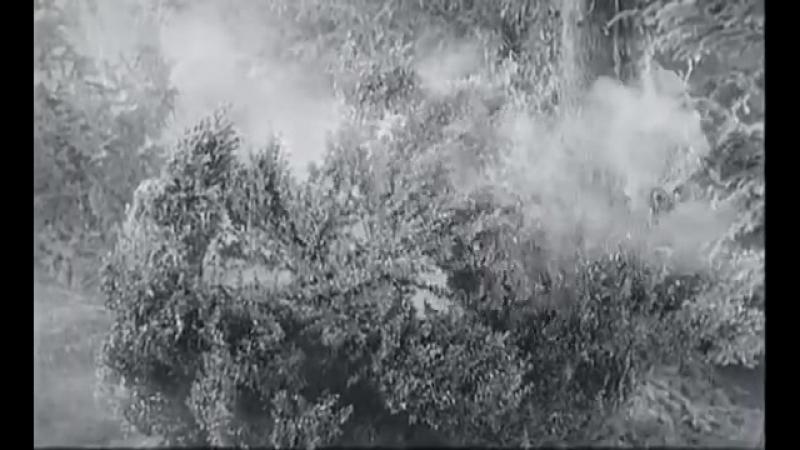 KOZARA Partizanski Film