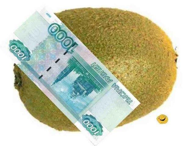 картинка с деньгами киви тонкостях
