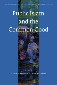 Public Islam and the Common Good edited