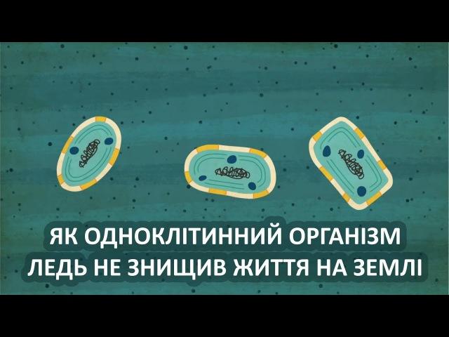 Як одноклітинний організм ледь не знищив життя на Землі [TED-Ed]