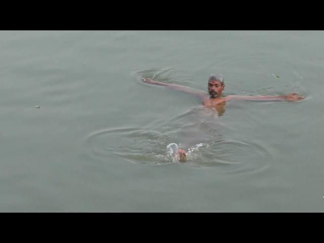 Сколько трупов в реке Ганг можно увидеть за один день
