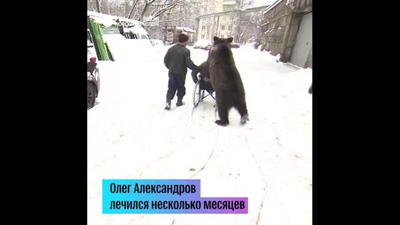 медведь и дресировщик