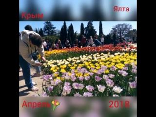 Ялта. выставка тюльпанов 2018.