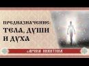 Предназначение тела, души и духа Арина Никитина