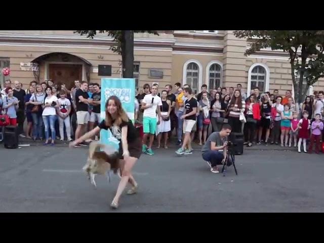 День города Воронеж (2015 г.). Фристайл девушки и собаки.