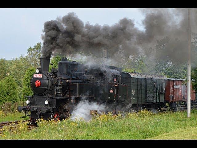 Parní lokomotiva 423 0145 - Parním vlakem Českým rájem 8.7.2017