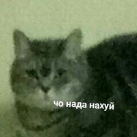 -HiRiS-
