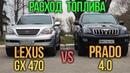 Расход топлива PRADO 4 0 vs Lexus GX470