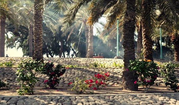 10 роскошных пляжей ОАЭ, изображение №2