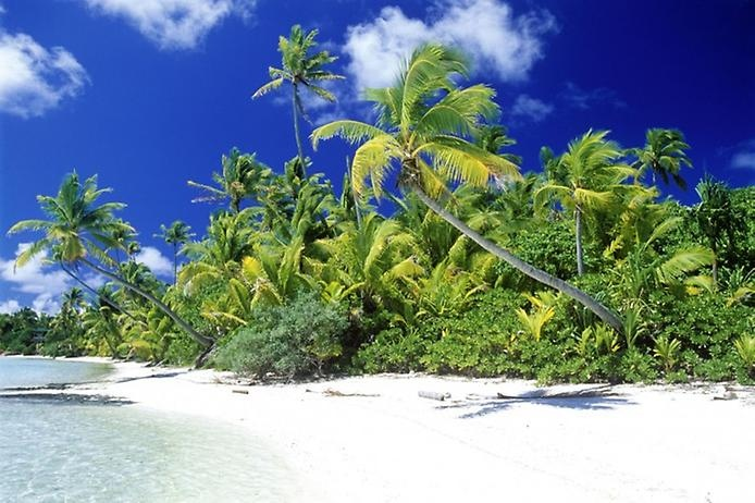 Соломоновы Острова в Тихом океане, изображение №5