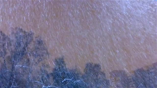 Снегопад Питер Метель Хлопья Снега Красивый Снегопад Снег Падает Снег Красиво Кружится Футажи Снег
