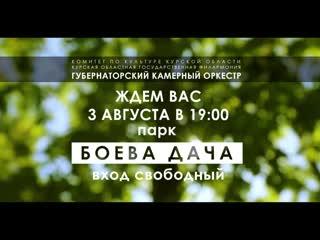 Концерт Губернаторского камерного оркестра под открытым небом