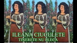 ILEANA CIUCULETE album Tinerete nu pleca 1984 Full